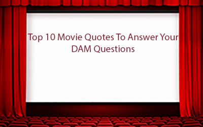 Top 10 Movie Quotes To Answer Your DAM Questions